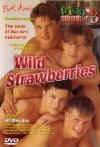 Bel Ami, Frisky Summer  3 Wild Strawberries